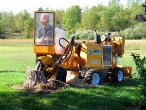 Stump Removal Fern Tree Gully